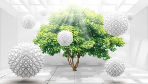 Дерево в белой комнате