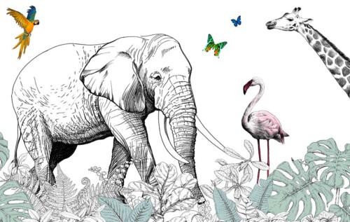 Слон, фламинго, жираф, попугай и бабочки на белом фоне