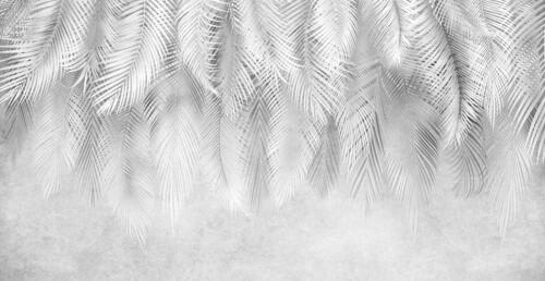 Свисающие листья пальмы в черно белом исполнении