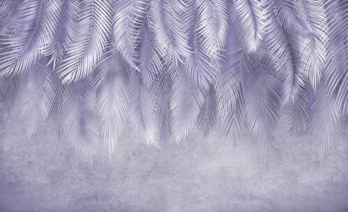 Свисающие пушистые листья пальм